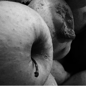 fruta-podrida