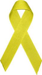 casales-lazo-amarillo